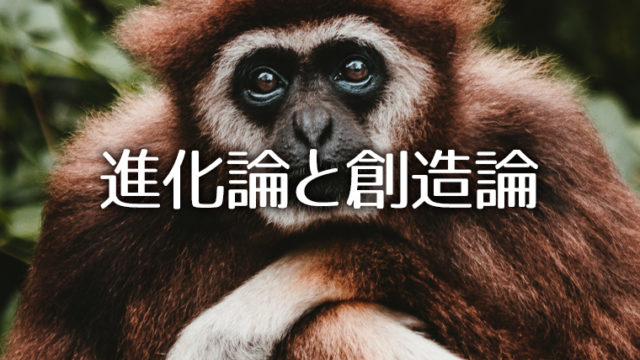 進化論と創造論