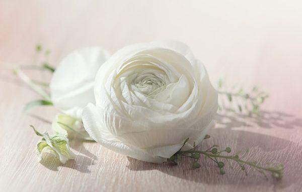 色白ならば美人になるパキスタン人