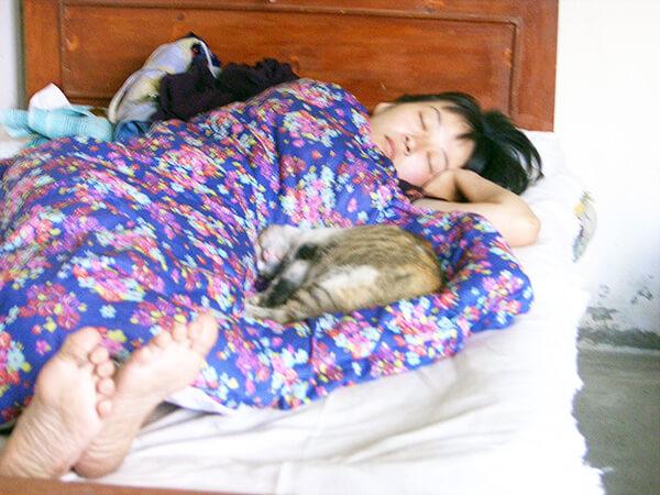 私のベッドで寝る猫