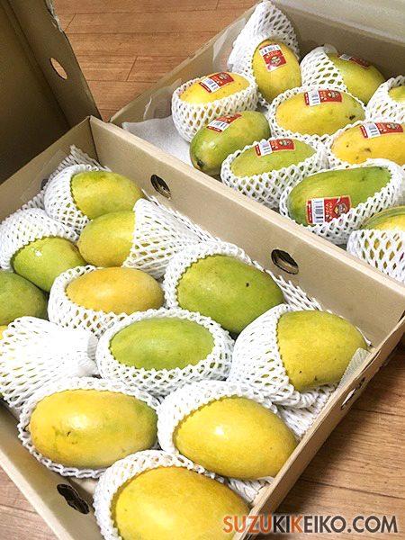 パキスタンのマンゴー チョウンサ