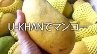 今年もパキスタンのマンゴーがやってきた U-KHANで買うマンゴー
