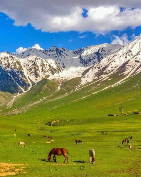 パキスタンは旅人に親切な国